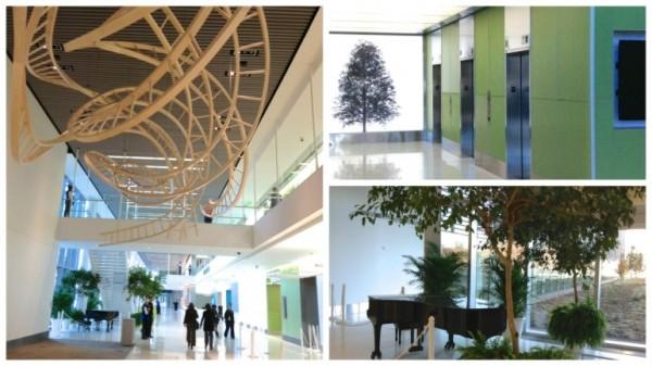 """Eskenazi Health com utilização de obras """"orgânicas"""" que remetem à natureza"""