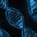Gene poderia explicar razão do câncer de pâncreas ser tão agressivo
