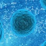 Pesquisas avançam no campo das mutações celulares