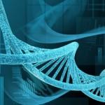 Nova compreensão sobre o desenvolvimento do Alzheimer