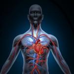 Inverno requer mais cuidados com o risco de infartos
