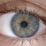 Dez pacientes perdem a visão após cirurgia de catarata
