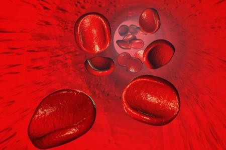 Existe transmissão de doenças neurodegenerativas por transfusão de sangue