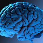 Mudanças na estrutura do cérebro durante a adolescência fornecem pistas para o aparecimento de problemas mentais futuros