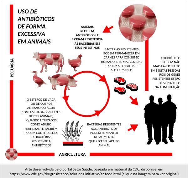 resistencia_antibiotico_pecuaria_agrucultura_imagem